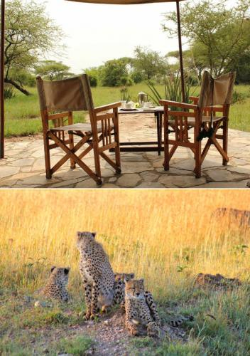 safari-tented-camp-serengeti