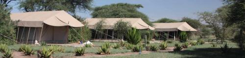 tents-mapito-camp-serengeti