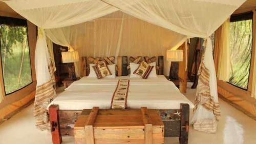 the-tents-2-luxury-tented-camp-serengeti